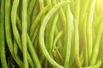 fagiolini - green beans