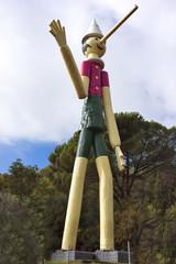 Pinicchio Gigante
