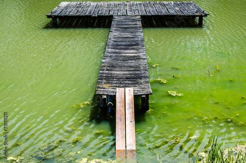 canvas print picture Holzsteg auf gruenlichem Wasser