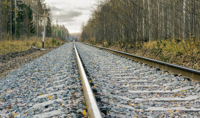 Railway in the wild autumn forest