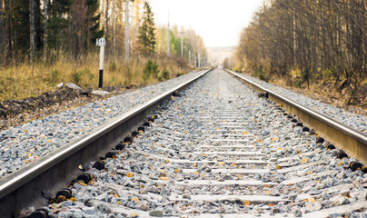Railroad in the wild autumn forest