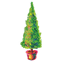 Decorative bay tree in pot with green foliage