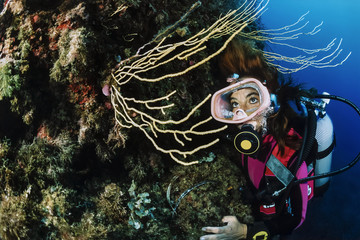 Italy, Tyrrhenian Sea, diver and yellow gorgonians