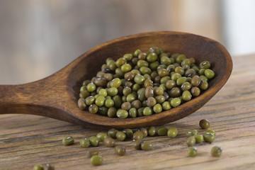graines vertes de soja