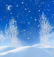 beautiful winter night landscape