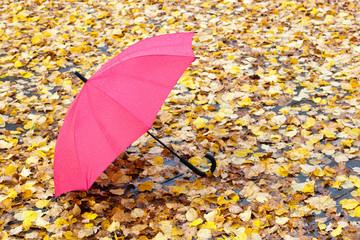 Red umbrella on autumn leaves