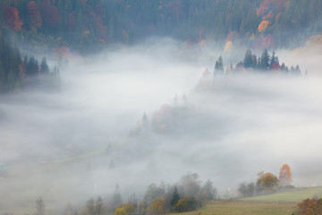 View of Misty Fog  in the Mountains - Beautiful Autumn Forest