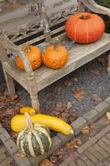 halloween pumpkins on bench