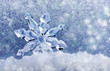 Leinwanddruck Bild - ice crystal on snow