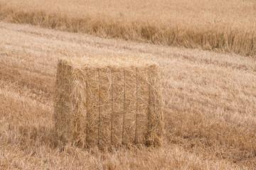 Square haystack