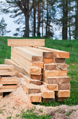 Wooden planks, sticks, blocks on the grass in a forest.