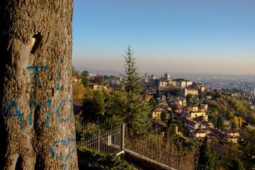 Love Bergamo