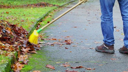 Worker  collect leaves on the street