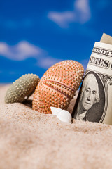 Sea  shells  and dollar money on the beach sand