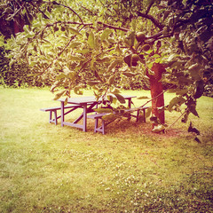 Wooden table in summer garden