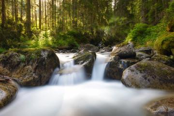 Waterfalls on Rocky Stream, Running Through Autumn Mountain Fore