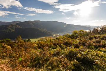 Montagne et vallée dans les Vosges en automne