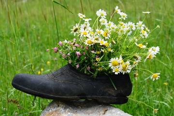 ayakkabının hikayesi