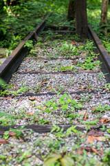 Retro railroad track in rural