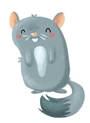 chinchilla roedor