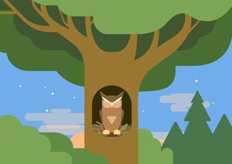 Owl hollow forest habitat flat cartoon vector wild animal bird