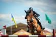 Equestrian - 71914265