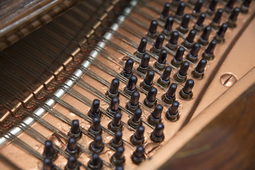 Detail From Piano Interior