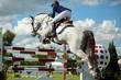 Equestrian - 71914466