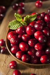 Raw Organic Red Cranberries