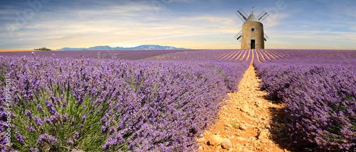 Fotobehang Vuurtoren / Mill France - Provence