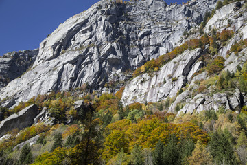 Autunno in Montagna 02