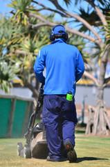 Lawn Cutting Service