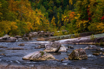 Wilson Creek autumn 14