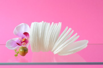 Wattepads Orchidee
