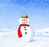 Fototapety Real Snowman Outdoors In White Scenery