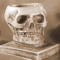 skull above an ancient book and orange background