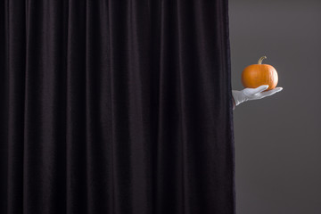 Hand with ripe pumpkin over black curtain.
