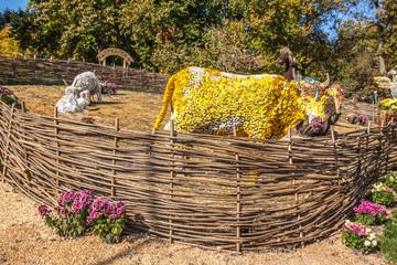 KIEV, UKRAINE - OCTOBER11: Chrysanthemumsr Show Landscape Park i