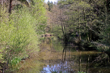 Stover Country Park, Devon