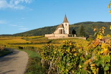 Eglise fortifiée en Alsace dans les vignes en Automne