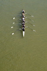 Eight men rowing on Danube river