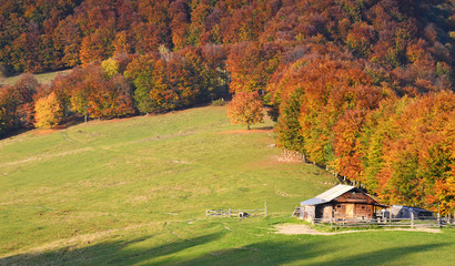 Scenic autumn landscape with old wooden hut in autumn forest (re