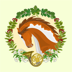 Piebald horse head of stallion hunting theme vector