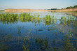 canvas print picture - überschwemmtes Grasland
