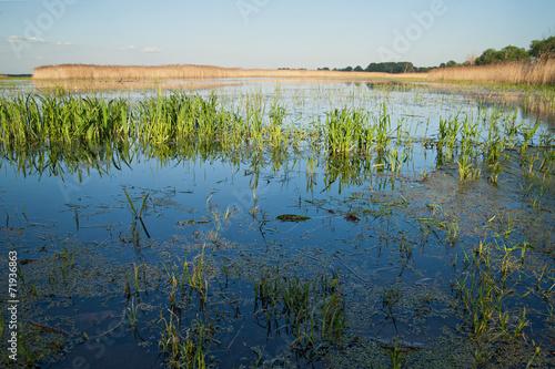 canvas print picture überschwemmtes Grasland