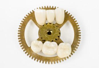 Zahn der Zeit 2