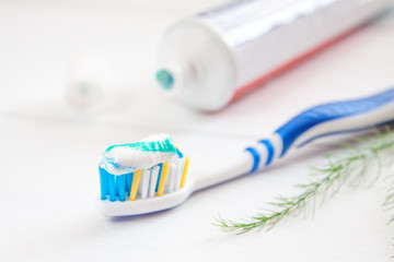 teeth brush and paste tube dental hygiene