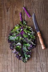 Kale leaf on a rustic wooden background