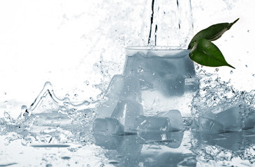 ice, leaf and splashes of water