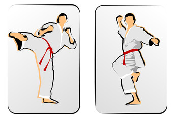 Oriental combat sports. Karate. Vector illustration